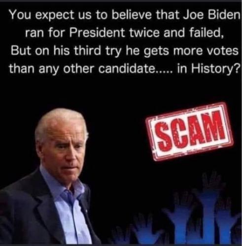 The Biden Scam